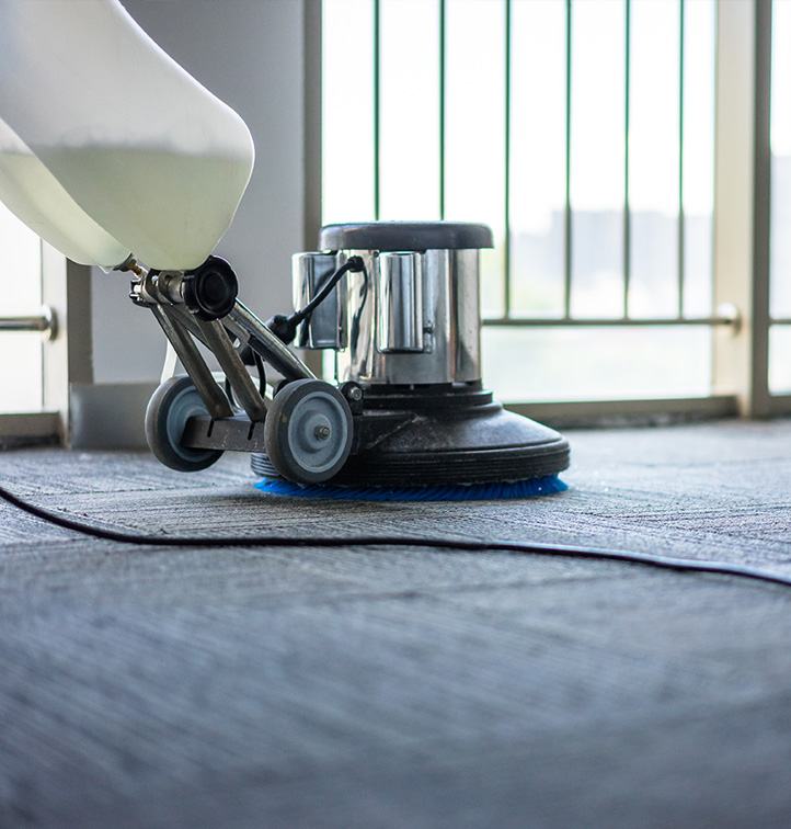 Carpet and Upholstery Cleaning Services in Metro Detroit MI - carpet